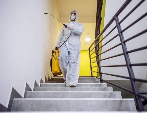 Dedetização em apartamentos: conheça os cuidados que devem ser mantidos após o serviço