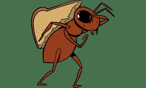 Sani System - Controle de formigas
